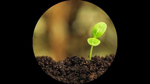 soil to soil
